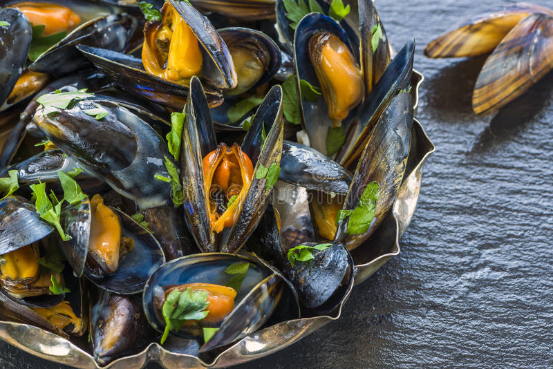 lagade mat musslor royaltyfria bilder