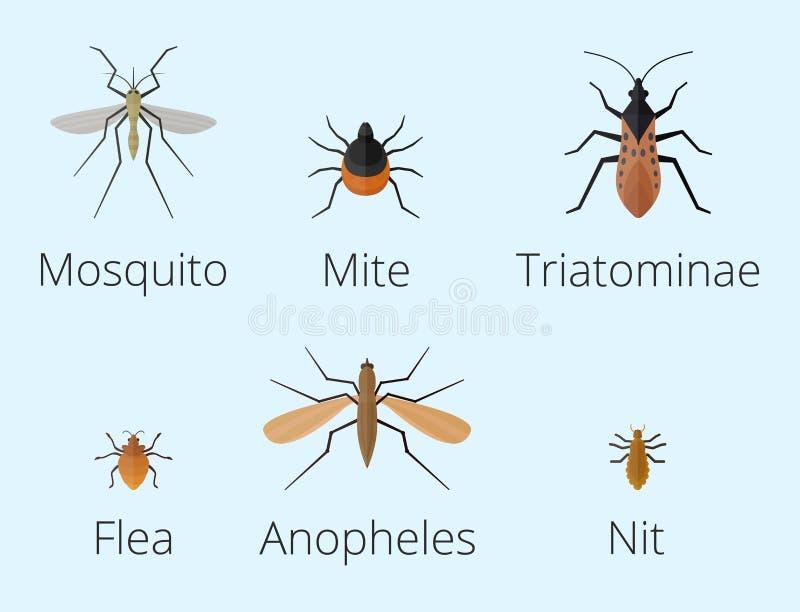 A lagarta colorida do sem-fim do verão do detalhe da asa dos animais selvagens dos ícones dos insetos desinseta a ilustração selv ilustração royalty free