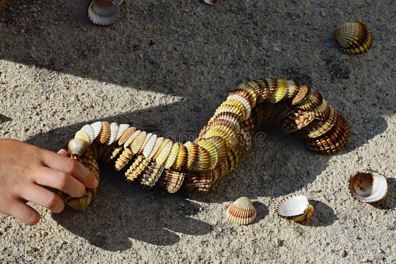 Lagarta decorativa feita de conchas do mar bivalves dos moluscos no molo concreto da praia, mão pequena da menina que adiciona sh fotografia de stock