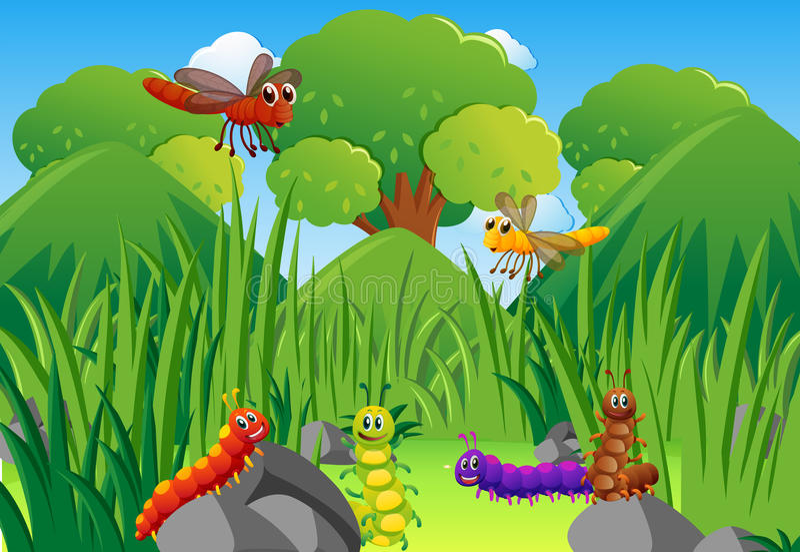 Lagartas e libélulas no jardim ilustração royalty free