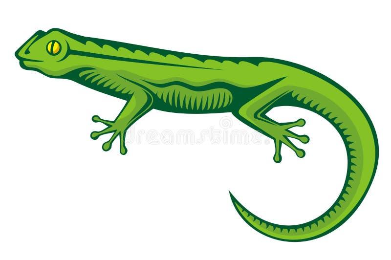 Lagarto verde ilustração stock
