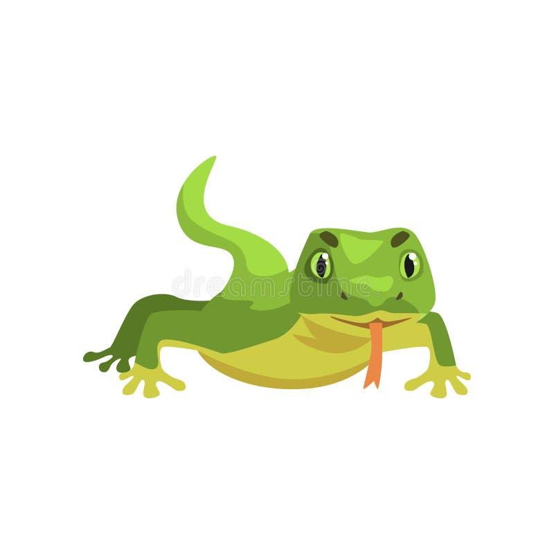 Lagarto verde, ejemplo animal anfibio del vector de la historieta ilustración del vector
