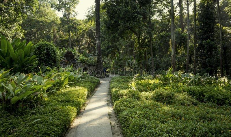 Lage de Parque en Rio de Janeiro photo stock