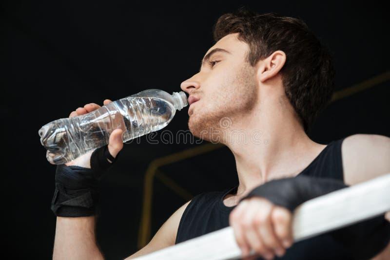 Lage mening van bokser drinkwater op ring stock afbeelding