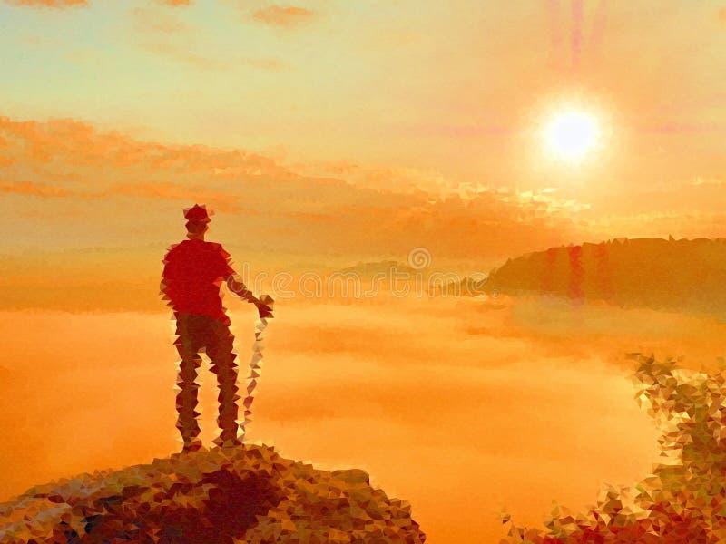 lage poly Het kijken aan horizon Mens op een rots die aan horizon kijken vector illustratie