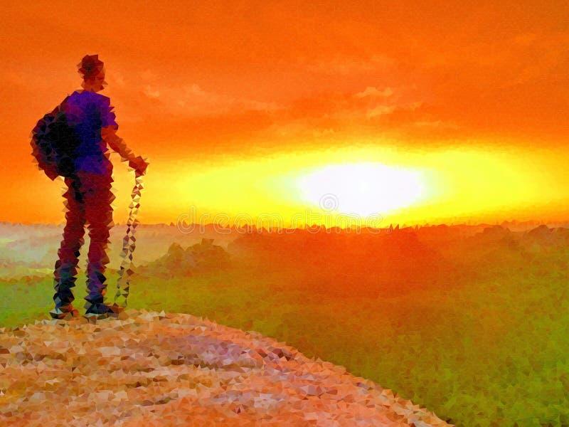 lage poly LLooking aan horizon Mens op een rots die aan horizon kijken stock illustratie