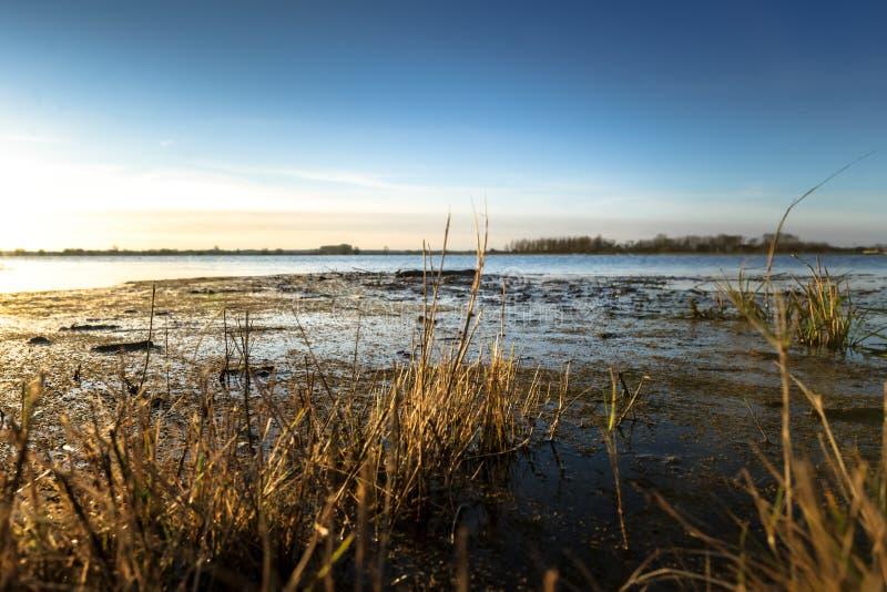 Lage punt of mening van een rivier met hoogwater stock foto's