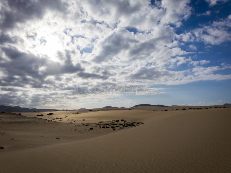 Lage zon recente middag, in het natuurreservaat, Corralejo, Fuerteventura, kanarie-Eilanden, Spanje stock foto's