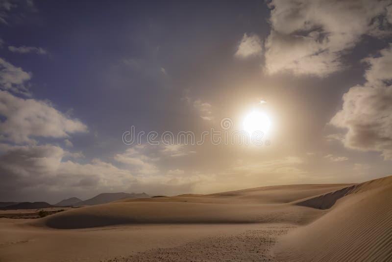 Lage zon recente middag, in het natuurreservaat, Corralejo, Fuerteventura, kanarie-Eilanden, Spanje stock afbeelding