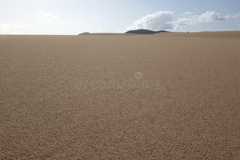Lage zon recente middag, in het natuurreservaat, Corralejo, Fuerteventura, kanarie-Eilanden, Spanje stock foto