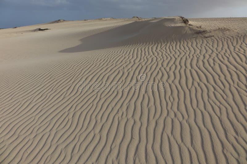Lage zon recente middag, met zandpatronen en texturen in het natuurreservaat, Corralejo, Fuerteventura, Canarische Eilanden, Span royalty-vrije stock afbeeldingen