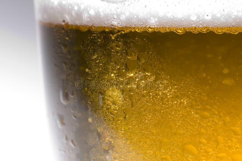 lager пива стоковое изображение