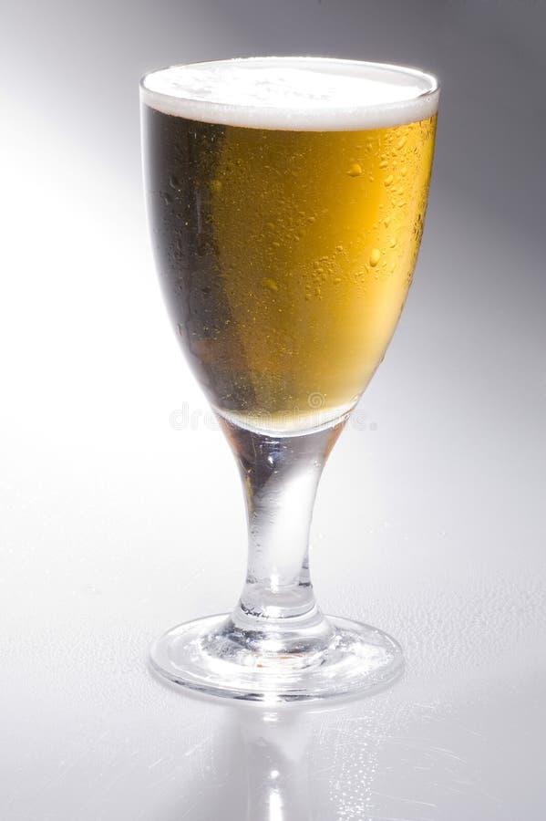 lager пива стоковые изображения rf