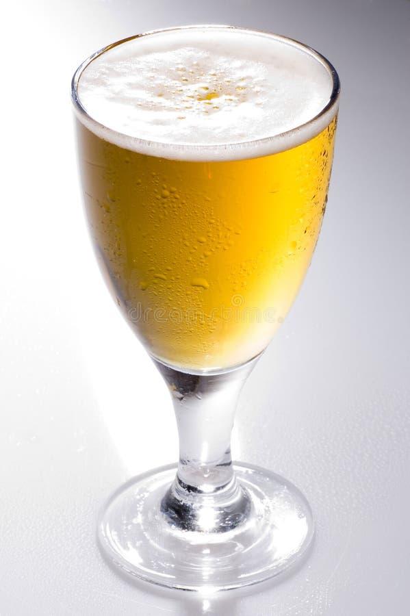 lager пива стоковое фото rf