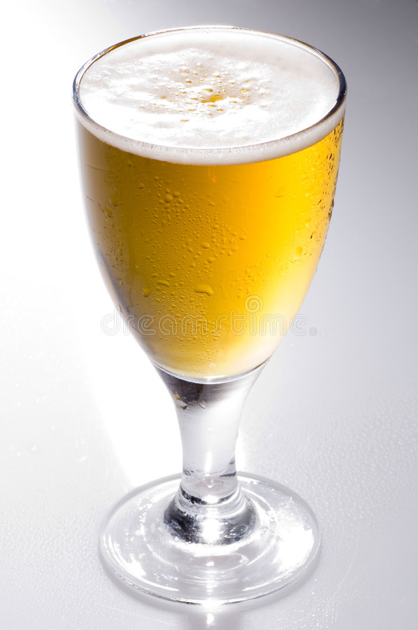 Lager beer royalty free stock photo
