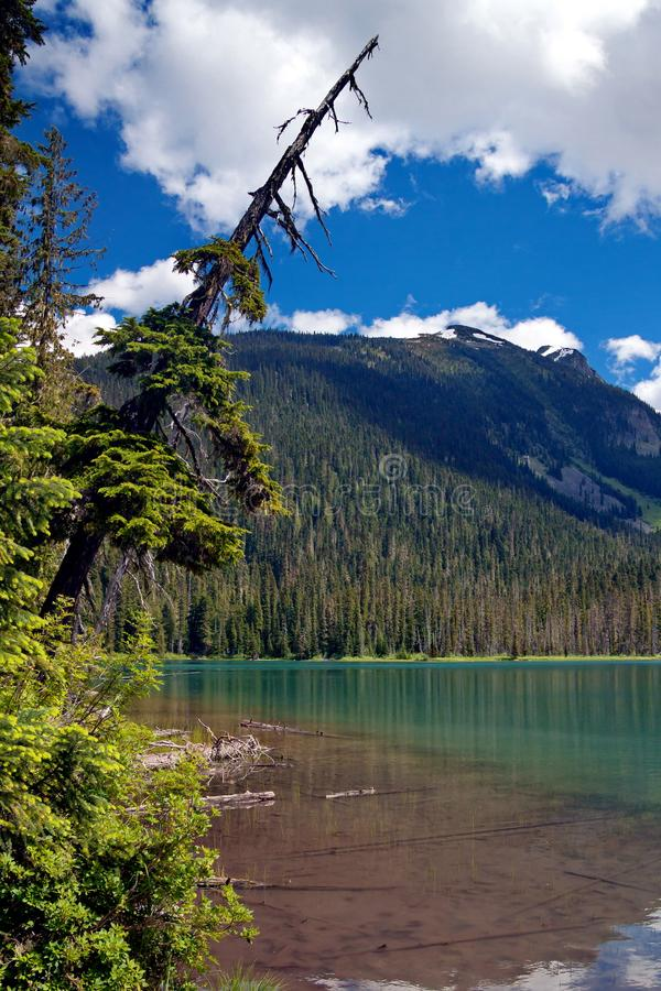 Lager Joffre Lake stock afbeelding
