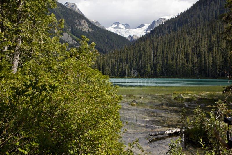 Lager Joffre Lake royalty-vrije stock afbeelding