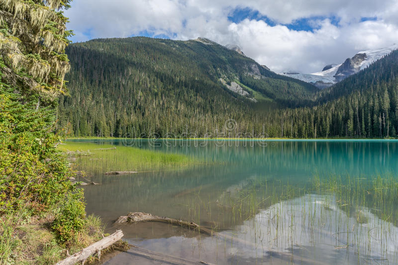Lager Joffre Lake in Brits Colombia royalty-vrije stock foto