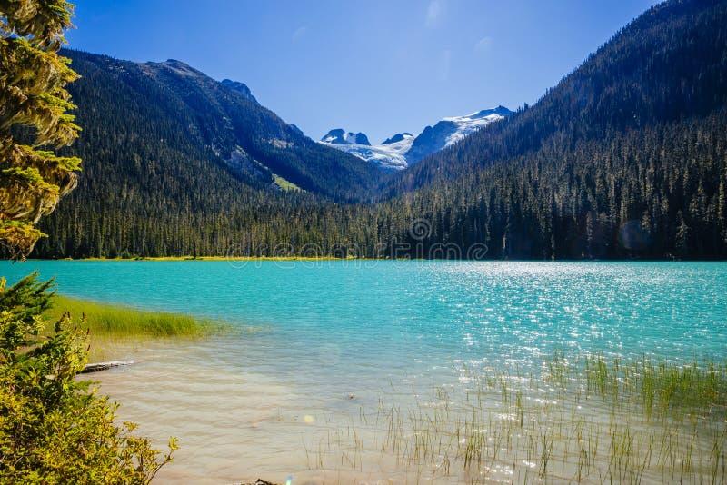 Lager Joffre Lake, Joffre Lake Provincial Park, BC, Canada royalty-vrije stock fotografie