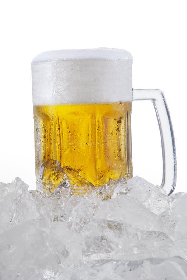 Lagerbier met schuim in het glas stock fotografie