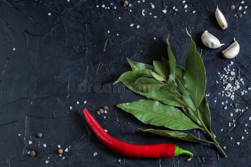 Lagerblad, chilipeppar, vitlök, salt hav och kryddpeppar arkivfoto