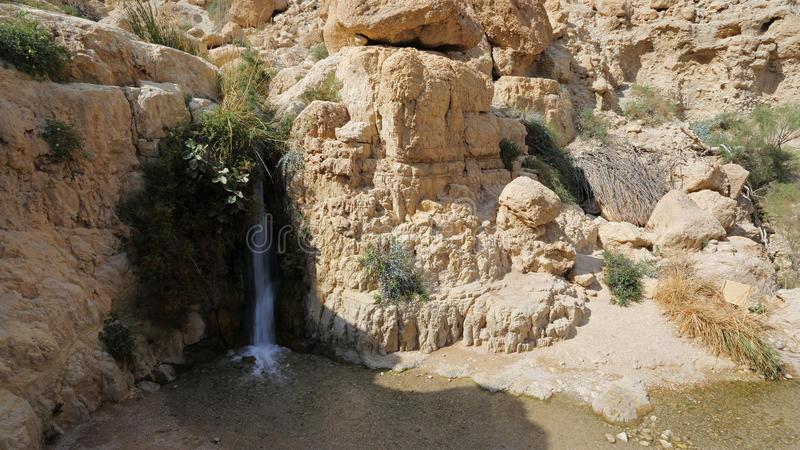Lagere waterval in Wadi David, Israël royalty-vrije stock foto's