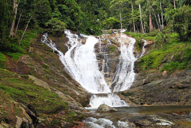 Lagerföra bilden av vattenfall på Cameron Highlands, Malaysia royaltyfria foton