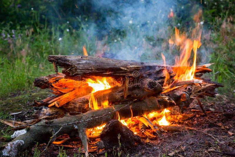 Lagerfeuer auf grüner Wiese stockbilder