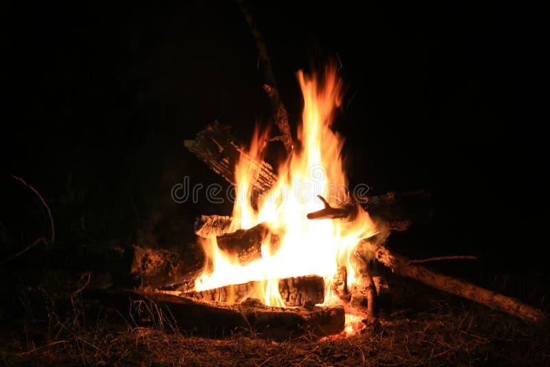 Lagerfeuer in der Nacht stockfotografie
