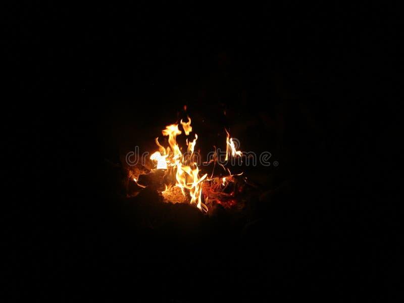 Lagerfeuer des Holzes nahe bei dem Fluss lizenzfreie stockfotografie