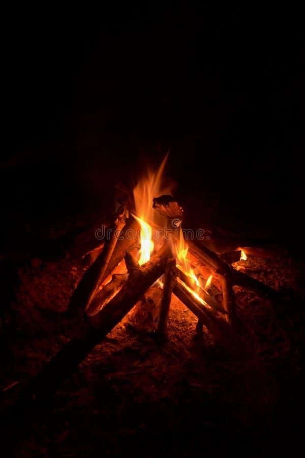 Lagerfeuerlicht im dunklen Nachtwald stockfoto