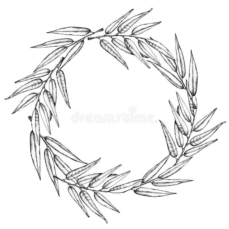 Lagerkranssymbol Emblem som g?ras av lagerfilialer Lager l?mnar symbol av h?gkvalitativa olivgr?na v?xter isolerad teckenwhite vektor illustrationer