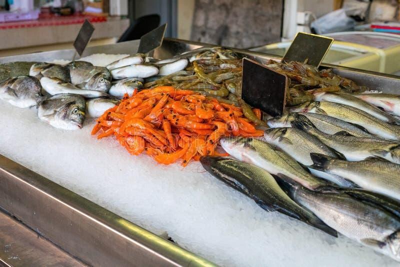 Lagerräknare med den nya fisken och räkor royaltyfri bild