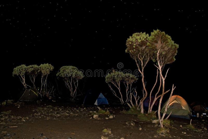 Lagerzeltnacht stockfoto