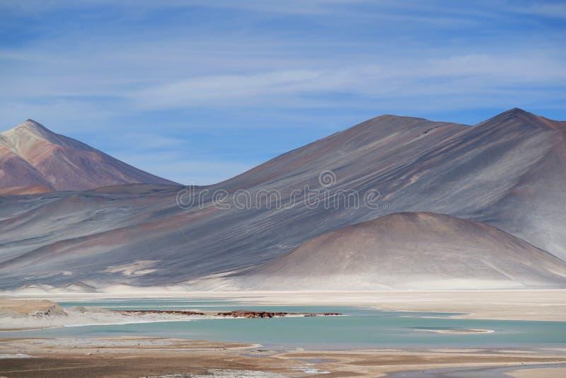 Laghi di sale di Salar de Talar con la montagna incredibile di Cerro Medano nel contesto, cileno le Ande, Cile del Nord fotografia stock