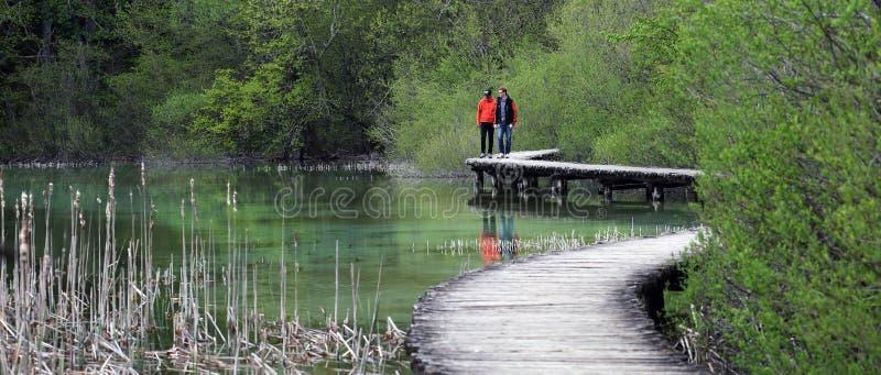 Laghi Plitvice (jezera) di Plitvicka, Croazia fotografia stock libera da diritti