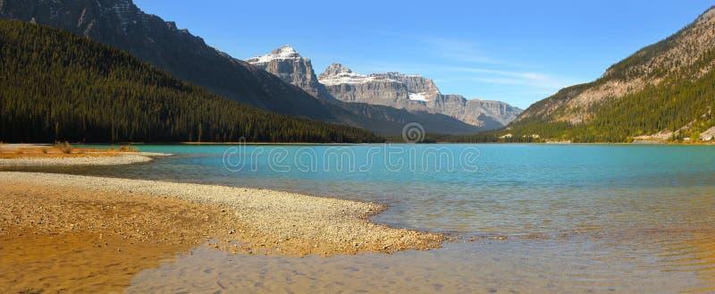 Laghi waterfowl in Alberta, Canada fotografia stock