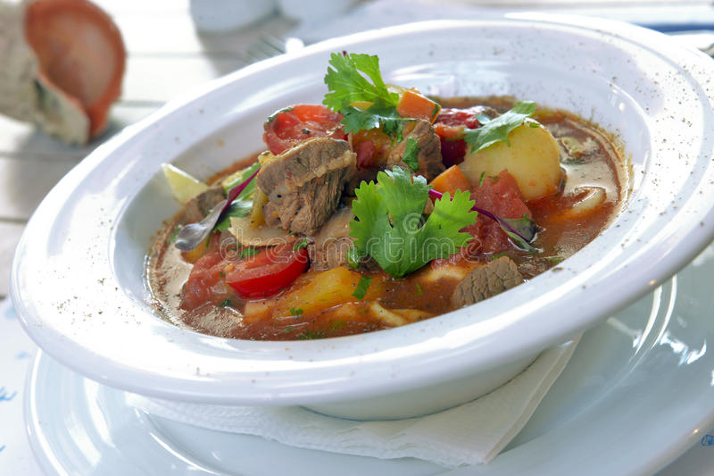 Download Lagman in a bowl stock photo. Image of lamb, bowl, white - 33121040