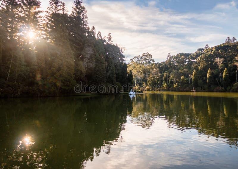 Lago黑人有天鹅脚蹬小船的Black湖- Gramado,南里奥格兰德州,巴西 库存图片