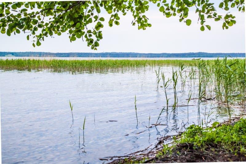 Lago 2 fotos de stock