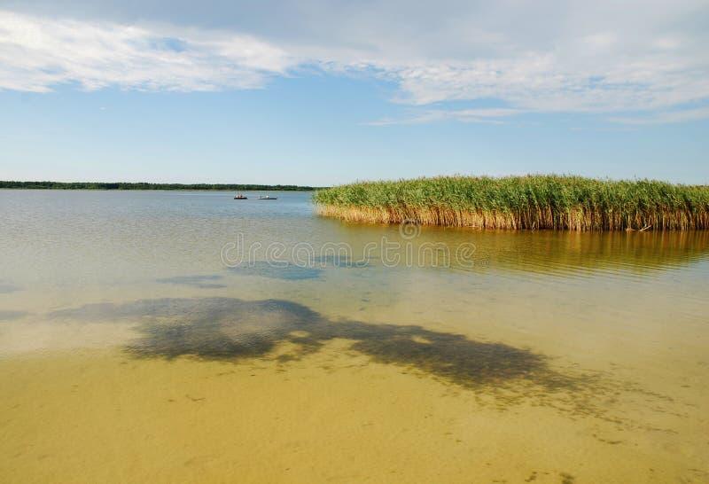 Download Lago immagine stock. Immagine di ambiente, riflessione - 7314091