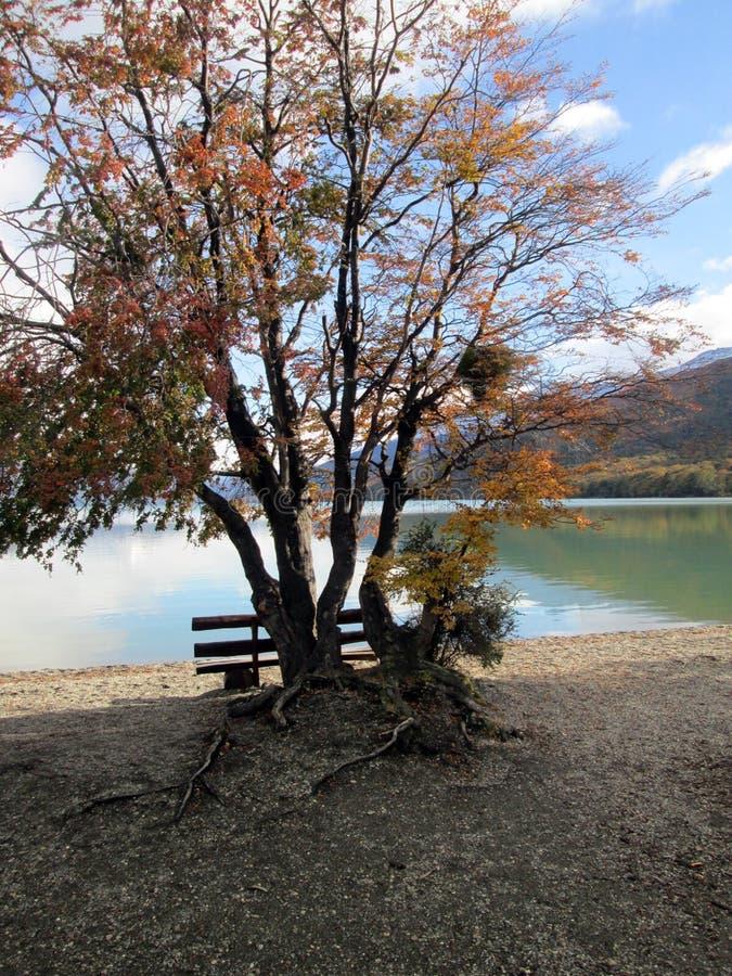 Lago Acigami Ushuaia Argentina imagem de stock