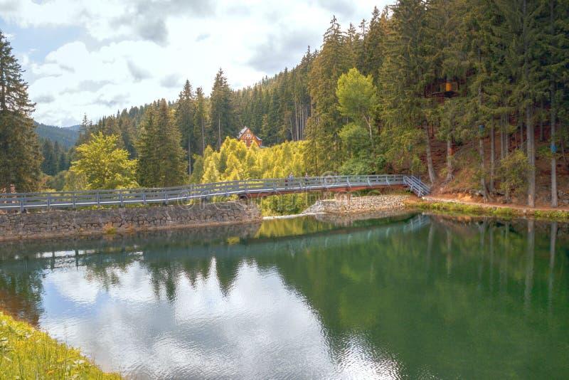 Lago, agua, paisaje, bosque, naturaleza, cielo, río, árbol, reflexión, árboles, otoño, montaña, azul, verde, verano, charca, al a foto de archivo