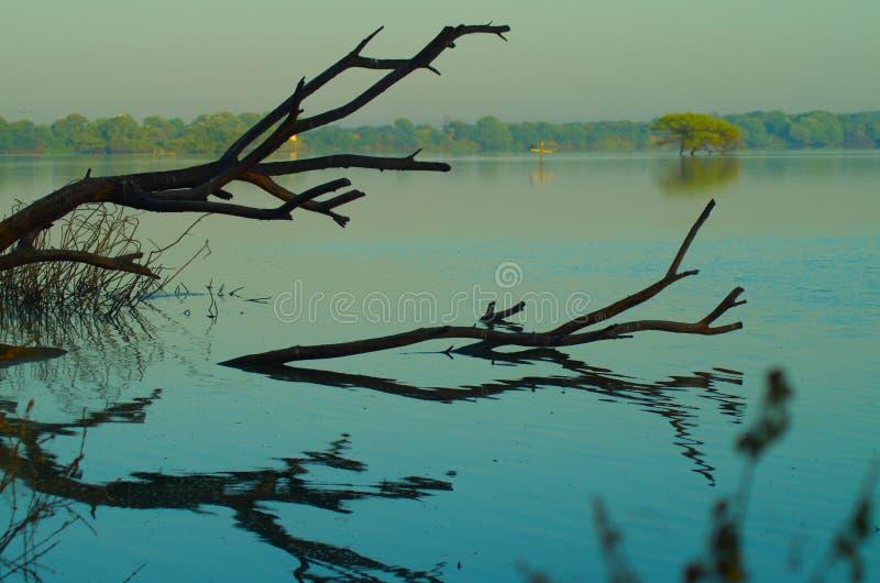 Lago Ahmadabad, Gujarat Thol imagenes de archivo