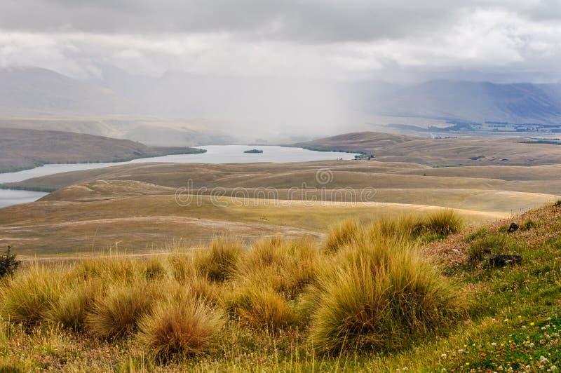 Lago Alexandrina - Tekapo imagen de archivo libre de regalías