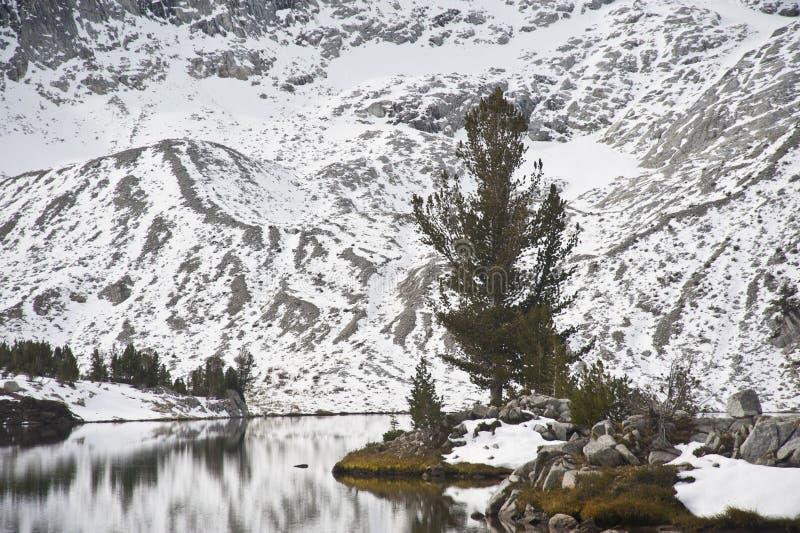Lago alpestre, montañas de Wallowa, Oregon fotografía de archivo