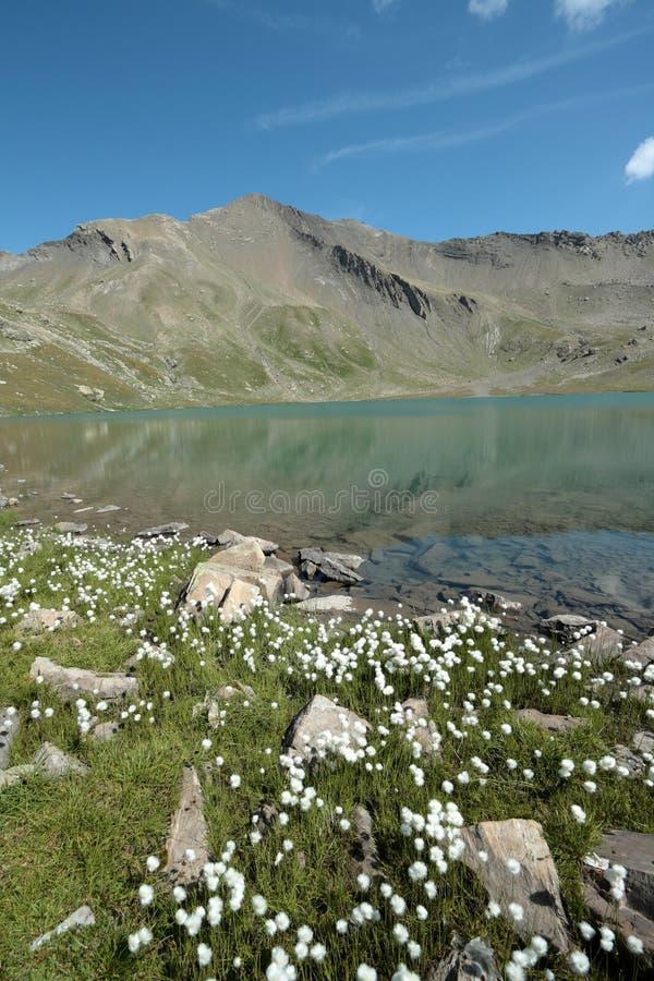 Lago alpino de estaris en Francia imagenes de archivo
