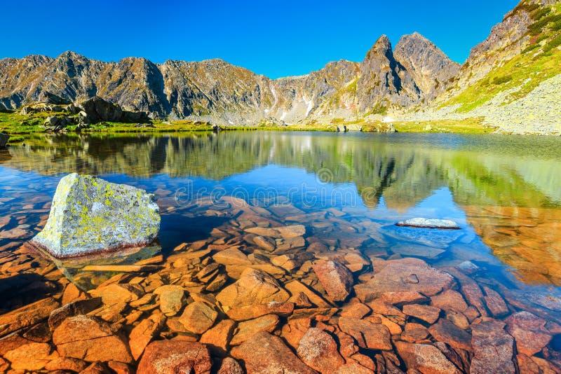 Lago alpino maravilloso de la montaña, montañas de Retezat, Transilvania, Rumania, Europa foto de archivo