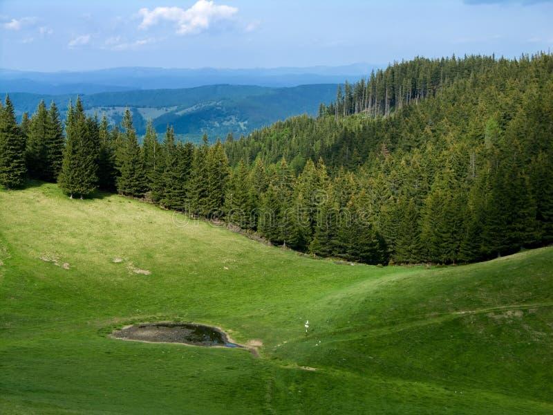 Lago alpino in montagna fotografie stock libere da diritti