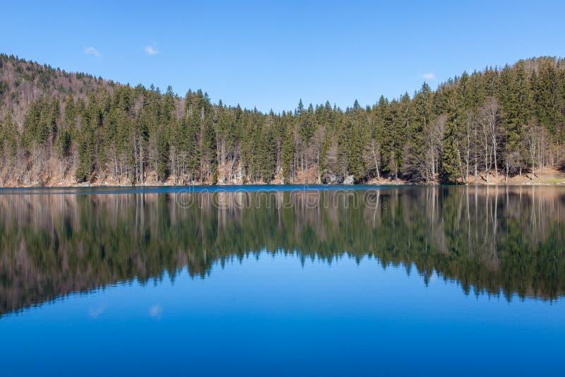 Lago alpino su Sunny Day fotografia stock libera da diritti